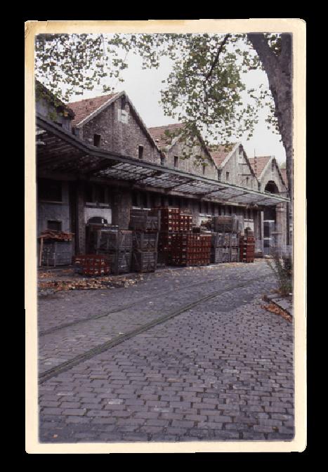 Les chais Lheureux en 1996 avant l'installation des Pavillons de Bercy